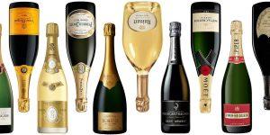 allt du behöver veta om champagne